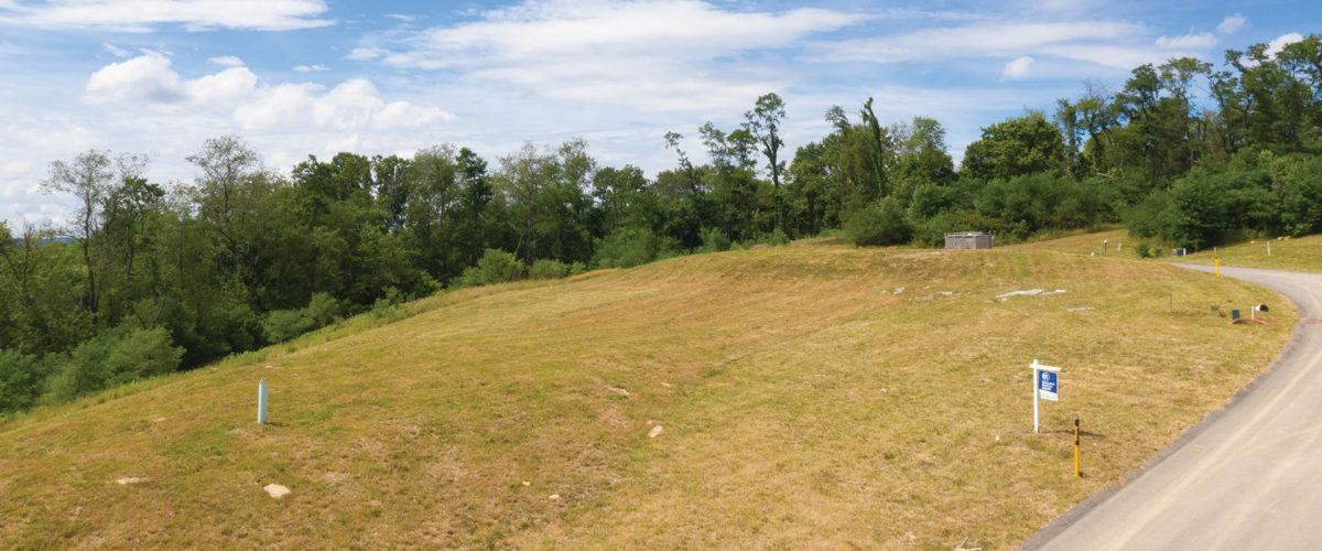 Treetop Acres