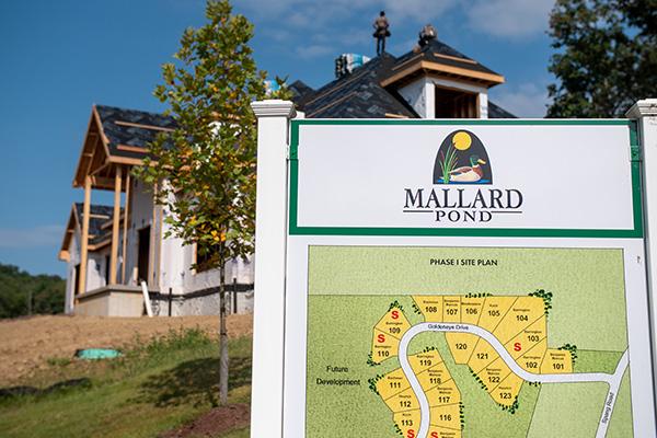 Entrance to Mallard Pond